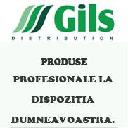 Gils Banner